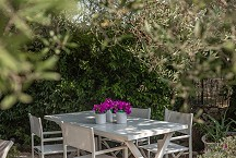 La Torretta beautiful seating under the olive tree