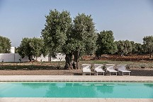 Lamia Parco Paolino pool and olive grove
